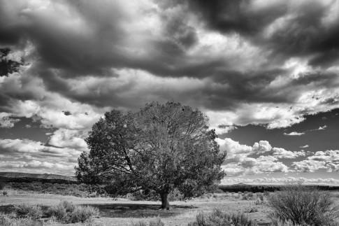 Catherine Vibert - Landscape Photography-1