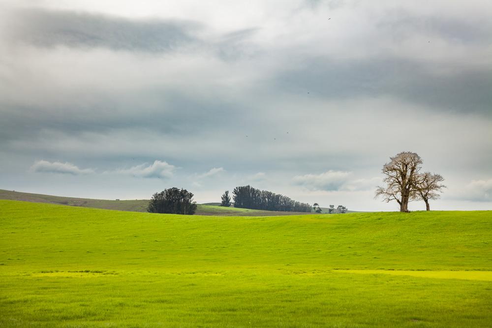 Catherine_Vibert__Landscape_Photography-19