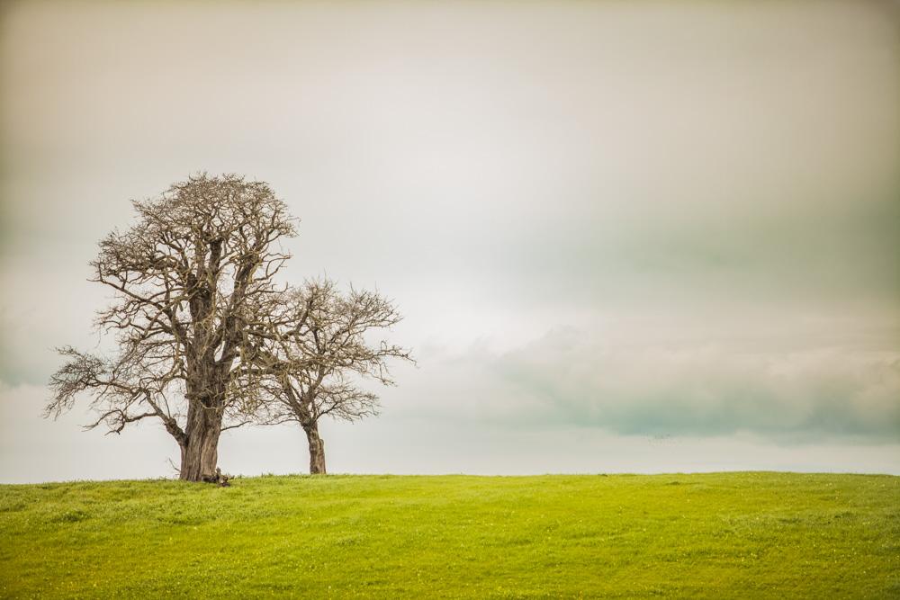 Catherine_Vibert__Landscape_Photography-20