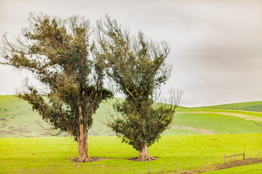Catherine_Vibert__Landscape_Photography-21