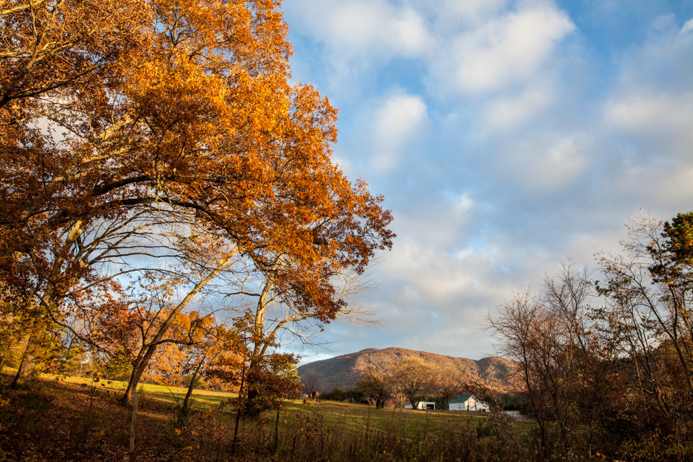 Catherine_Vibert__Landscape_Photography-4
